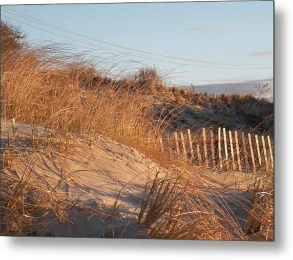 Sunrise On The Dunes Metal Print by Donald Cameron