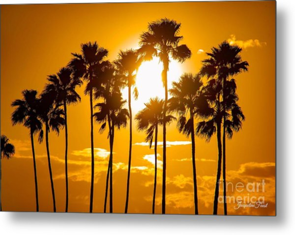 Sunrise Palms Metal Print