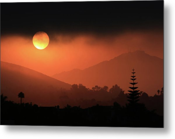 Sunrise With Coastal Fog Metal Print by Robin Street-Morris