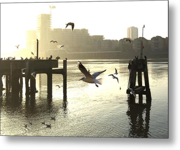 Sunrise With Seagulls Metal Print