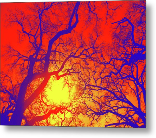 Metal Print featuring the photograph Sun's Stage by Pacific Northwest Imagery