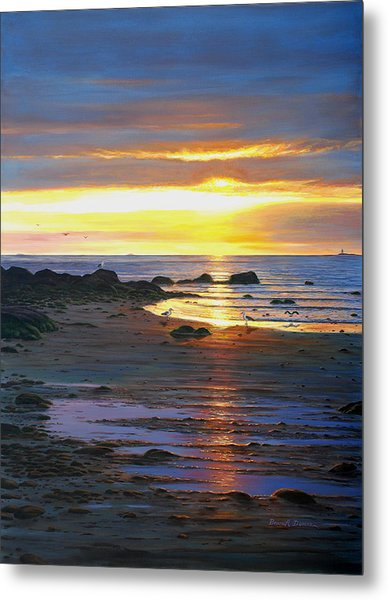 Sunscape Metal Print by Bruce Dumas