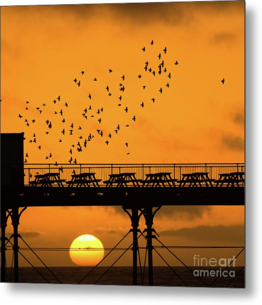 Sunset And Starlings In Aberystwyth Wales Metal Print