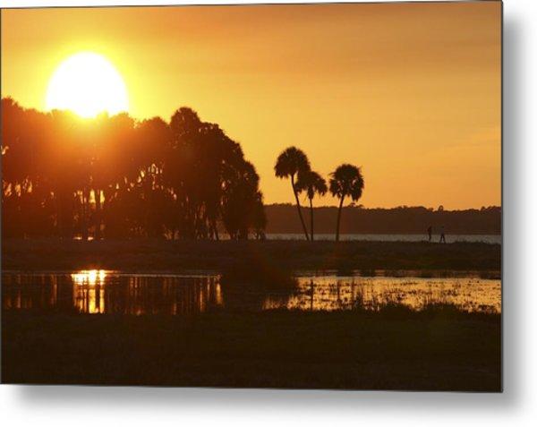 Sunset At Myakka River State Park In Florida, Usa Metal Print
