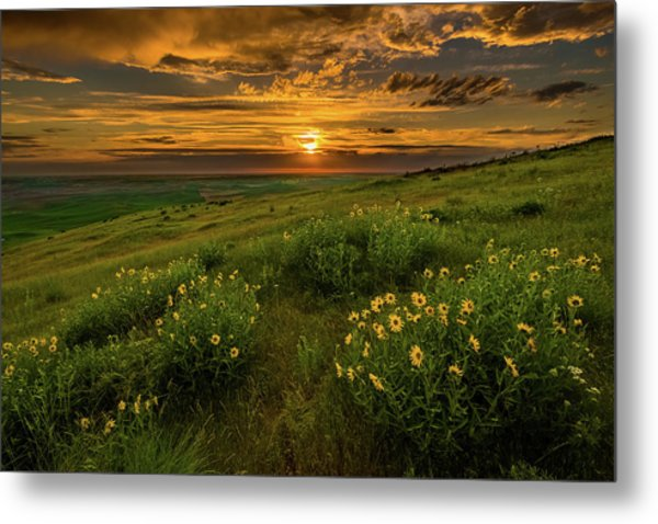 Sunset At Steptoe Butte Metal Print