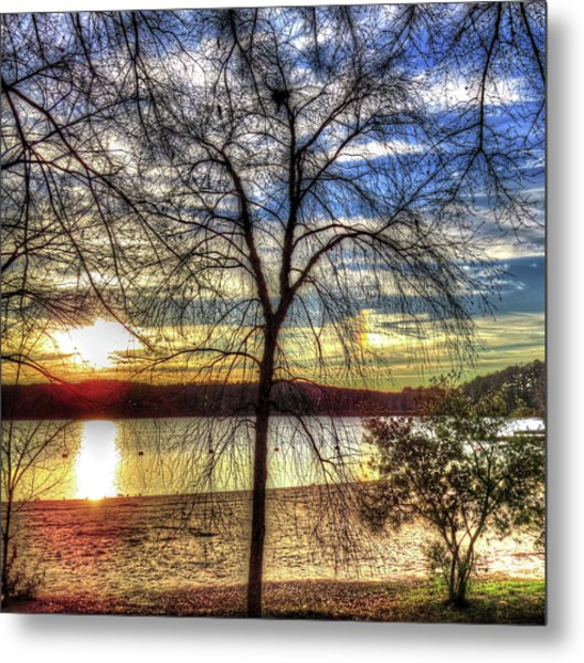 Sunset At The Park Metal Print