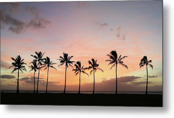 Sunset Behind The Palms Metal Print