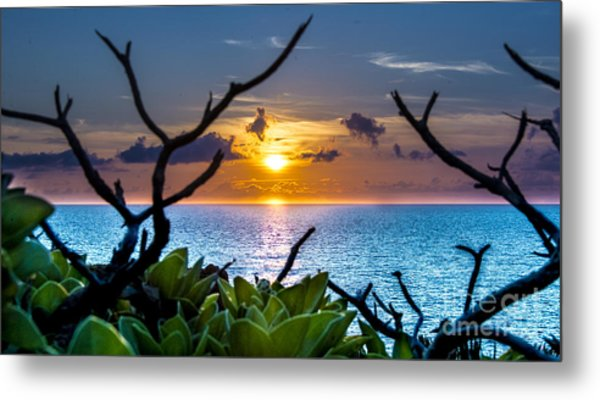 Sunset By The Point Metal Print