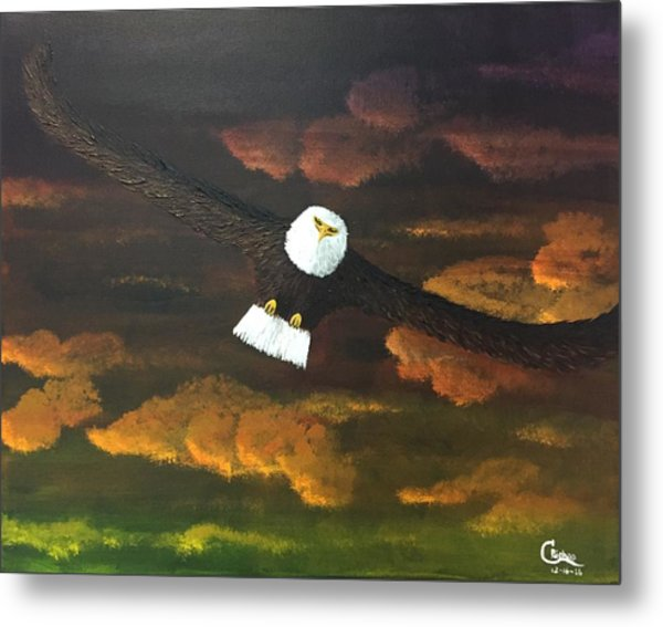 Sunset Eagle Metal Print