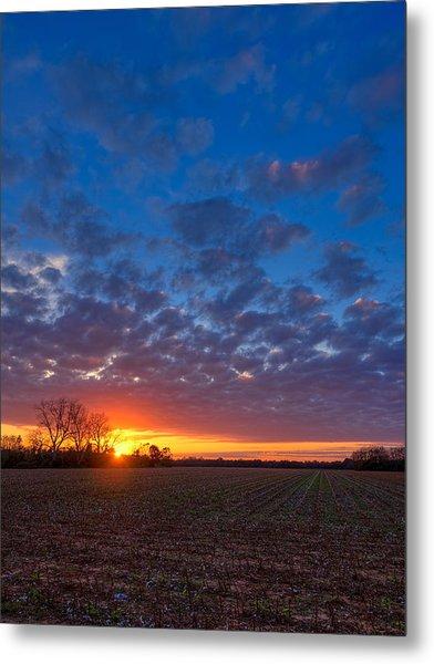 Sunset Field Metal Print