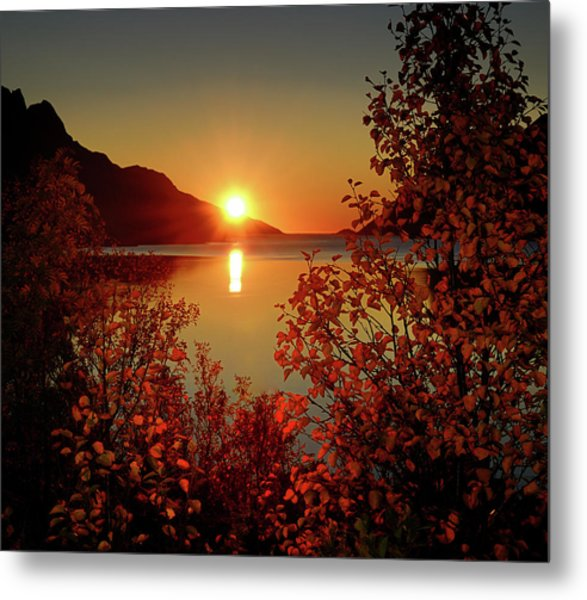 Sunset In Ersfjordbotn Metal Print