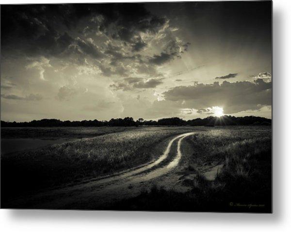 Sunset Lane-bw Metal Print