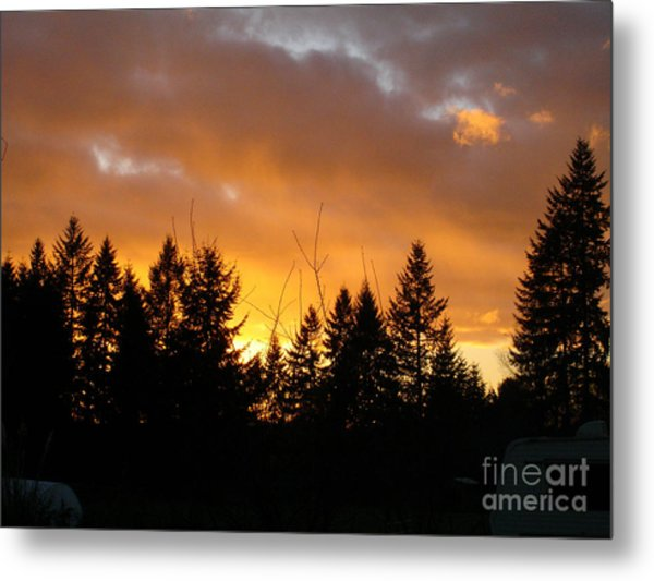 Sunset My Front Yard Metal Print by Mary Jo Zorad