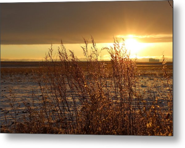 Sunset On Field Metal Print