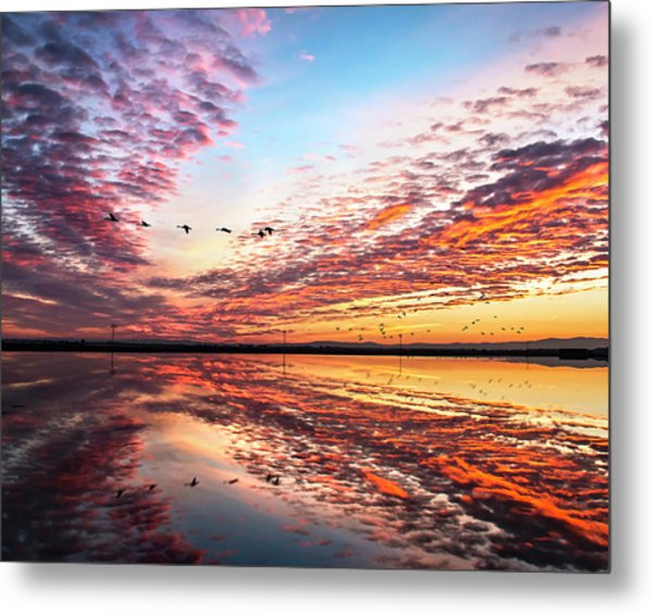 Sunset On The Pacific Flyway Metal Print