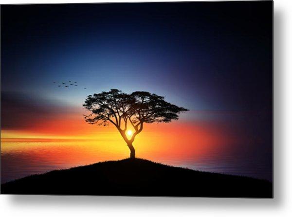Sunset On The Tree Metal Print