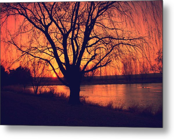 Sunset On Willow Pond Metal Print