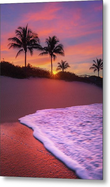 Sunset Over Coral Cove Park In Jupiter, Florida Metal Print