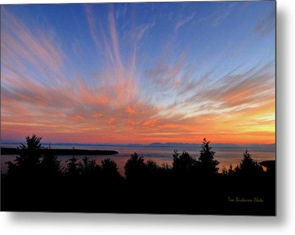 Sunset Over Cypress Metal Print by Tom Buchanan