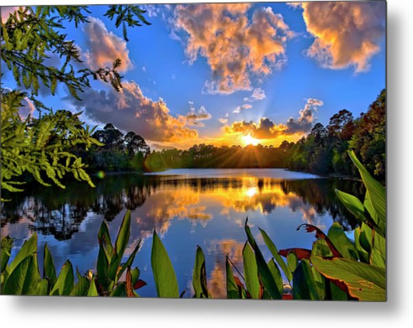 Sunset Over Hidden Lake In Jupiter Florida Metal Print