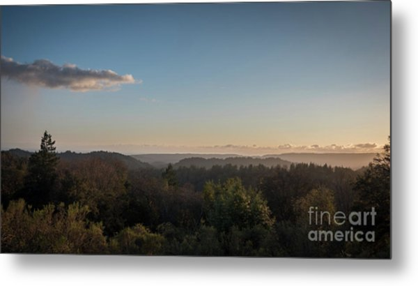 Sunset Over Top Of Dense Forest Metal Print