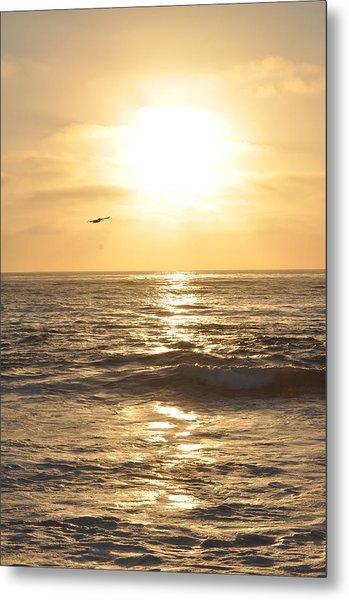 Sunset Pelican Silhouette Metal Print