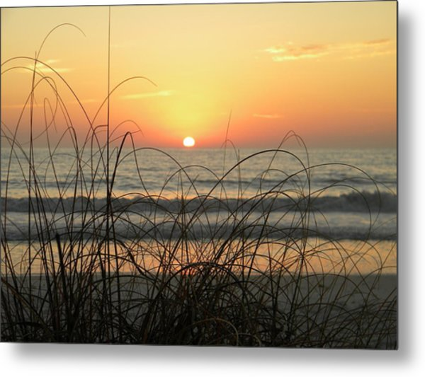 Sunset Sea Grass Metal Print