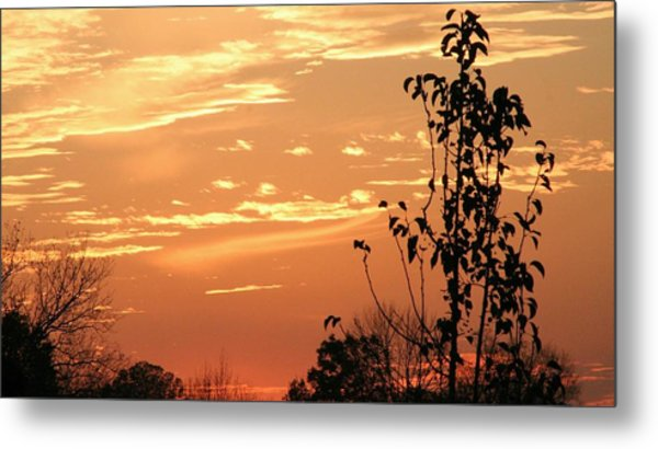 Sunset Series No. 1 Metal Print by Christina Martinez