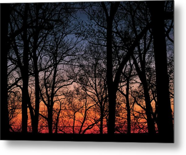Metal Print featuring the photograph Sunset Through The Trees by Mark Dodd