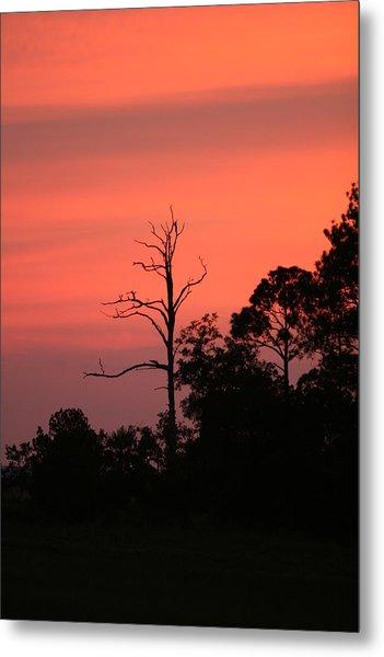Sunset Metal Print by Walt Reece