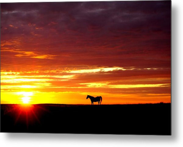 Sunset Watcher Metal Print