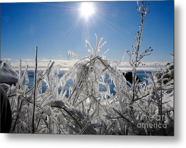 Sunshine And Ice Metal Print