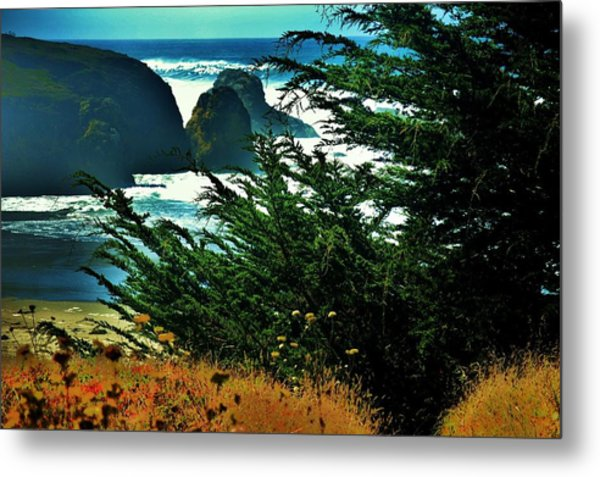Sunshine At The Coast Metal Print by Helen Carson