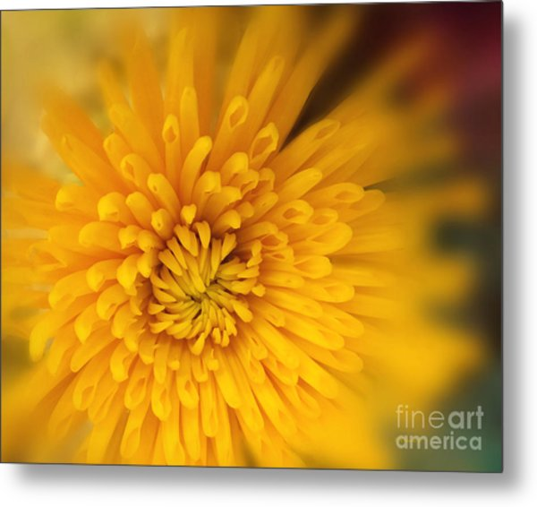 Sunshine Mum Metal Print