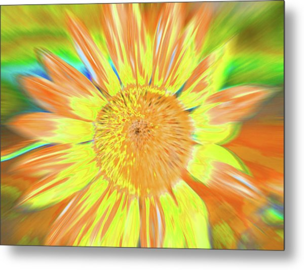Sunsoaring Metal Print