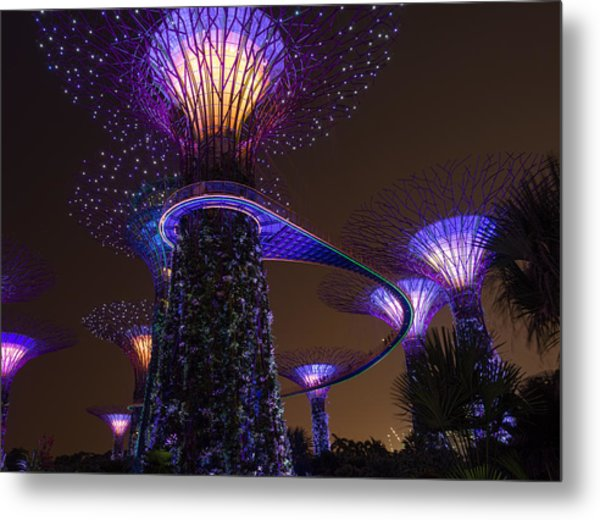 Supertrees Metal Print