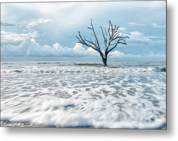 Surfside Tree Metal Print