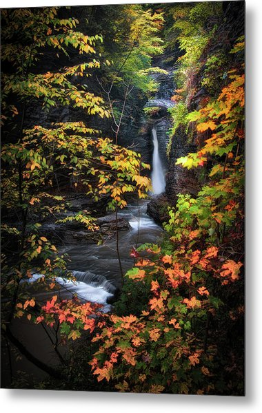 Surrounded By Fall Metal Print