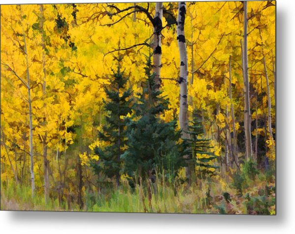 Surrounded By Gold Metal Print