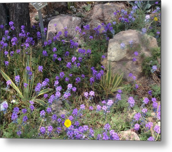Surrounded By Purple Flowers Metal Print