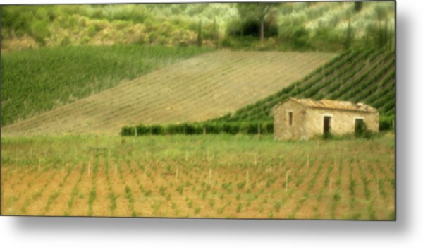 Surrounded By Vineyards Metal Print