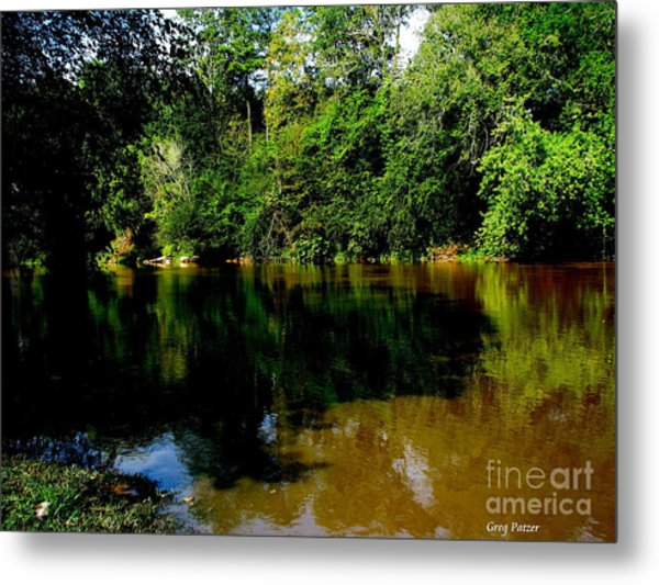 Suwannee River Metal Print by Greg Patzer