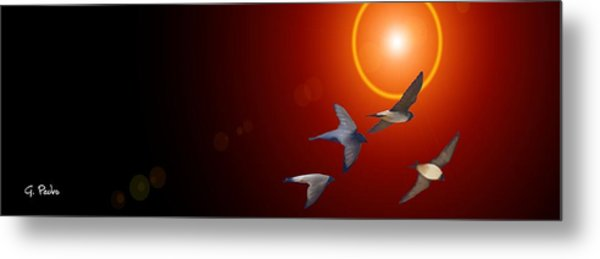 Swallows In Flight Metal Print