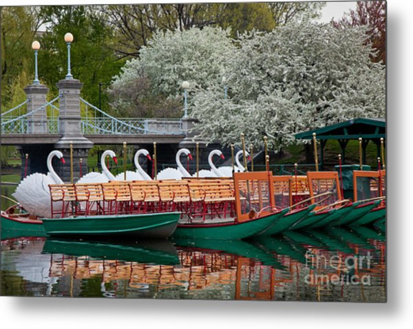 Swan Boat Spring Metal Print