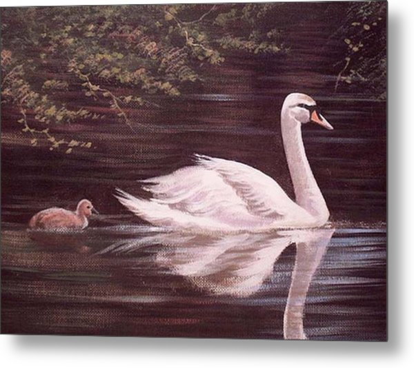 Swan Lake Metal Print by Cathal O malley