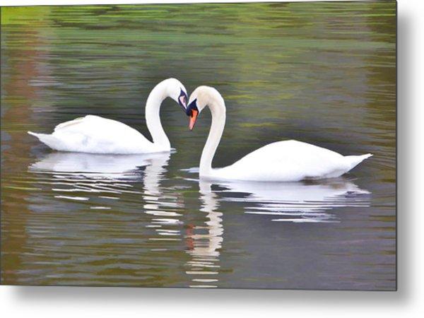 Swan Love Metal Print