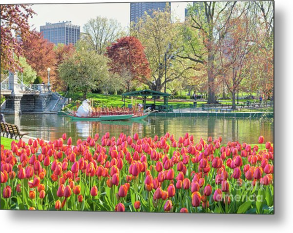 Swans And Tulips 2 Metal Print