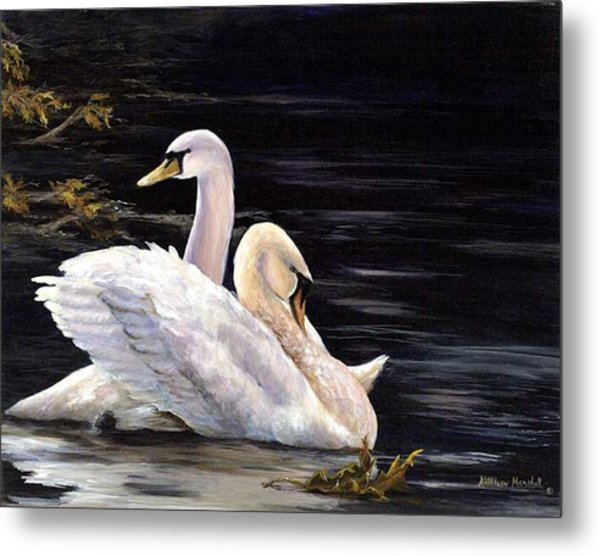Swansong Metal Print by Kathleen Marshall McConnell