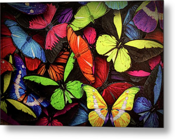 Swarm Of Butterfles  Metal Print
