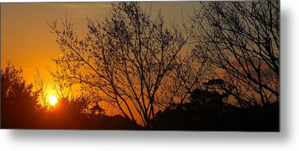 Metal Print featuring the photograph Sway by HweeYen Ong